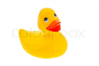 A yellow rubber duck on white background isolated
