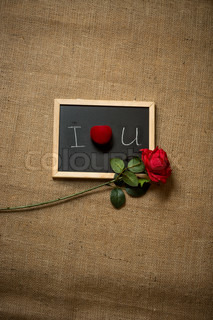 Red rose and wedding ring lying on declaration of love