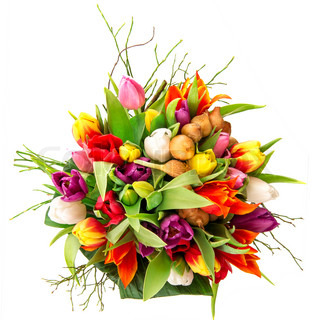 bouquet of fresh colorful tulips on white