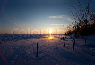 Image of 'winter, scenery, sun'