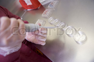 Embryologist preparing cultures in laboratory