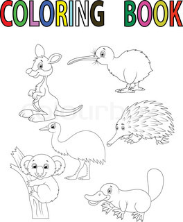 Animals of Australia Stock Vector Colourbox