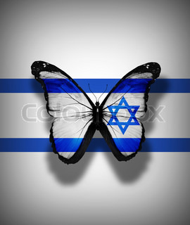 Israeli flag butterfly, isolated on flag background