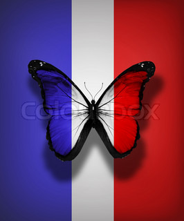 French flag butterfly, isolated on flag background