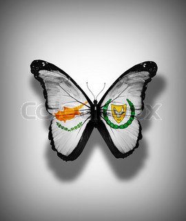 Cyprus flag butterfly with coat of arms, isolated on flag background
