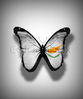 Cyprus flag butterfly, isolated on flag background