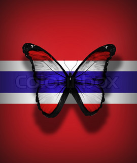 Thailand flag butterfly, isolated on flag background