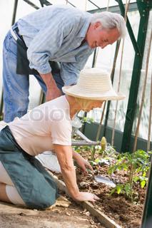 Billede af 'arbejder, pensionering, kvinde'
