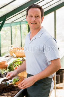 Image of 'greenhouse, working, man'