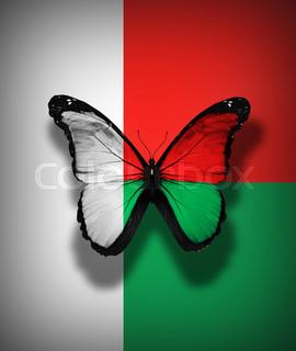 Madagascar flag butterfly, isolated on flag background
