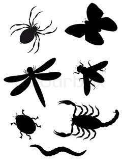 beetles and insects silhouette illustration