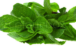 Fresh green mint isolated on white background