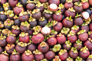 fresh mangosteen fruit in market