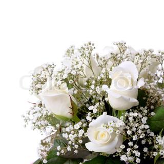 Billede af 'jubilæum, Blomst, blomstre'