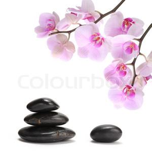 Billede af 'aromaterapi, sundhed, pink'