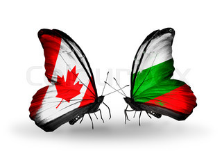 Two butterflies with flags on wings as symbol of relations Canada and Bulgaria