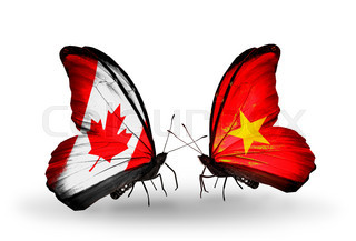 Two butterflies with flags on wings as symbol of relations Canada and Vietnam
