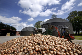 Billede af 'biogas, løg, indsamlingen'