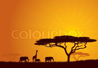 Grafiken von 'afrika, motiv, sonnenlicht'
