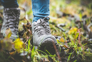 shoes in a forest