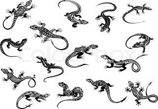 Black lizards reptiles for tattoo design