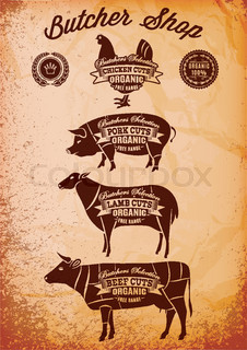 vector diagram cut carcasses chicken, pig, cow, lamb