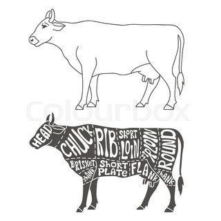 Pork likewise Search likewise Stock Illustration Butcher Cuts Scheme Pork Hand Drawn Illustration Vintage Style Image55714397 in addition Set Schematic Vew Of Animals For Butcher Shop Vector 17696067 moreover Meat Cuts Diagrams Butcher Shop Scheme 632984648. on swine meat cuts