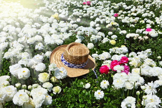 Elegant straw hat on a sunny day on the field of flowers