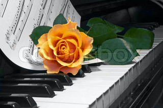 rose over note on piano key
