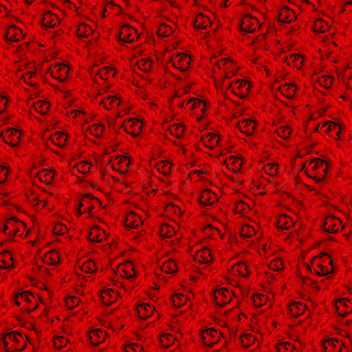 Background from red roses with water drops