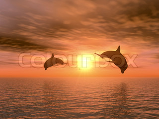 two dolphins floating at ocean (realistic red sunset)