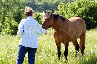 woman and horse in the fields