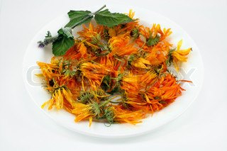 The dried up flowers of a medicinal calendula. Of colours do medical products.