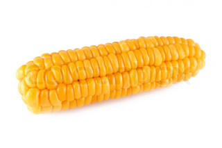 sweet corn on a white background