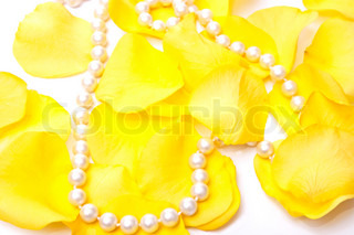 Yellow roses petals and white pearls isolated on white background