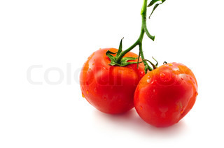 Two fresh ripe tomatoes on a stem