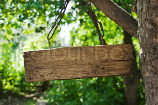 old wooden sign on a chain hanging from a tree