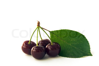 ripe cherry with leafs against white background