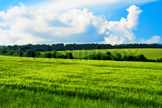 Rural landscape with green hills and blue sky