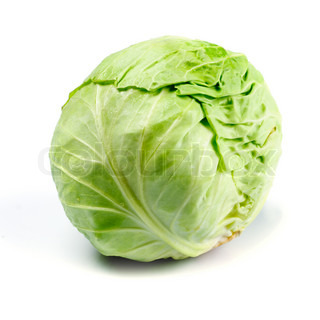 One cabbage yield isolated on white background.