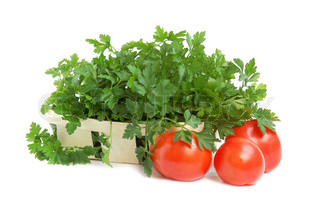 Gardening parsley in a small basket and tomatoes on white backgroundin