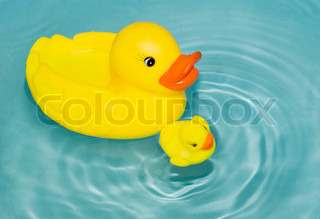 rubber yellow ducks floating on water