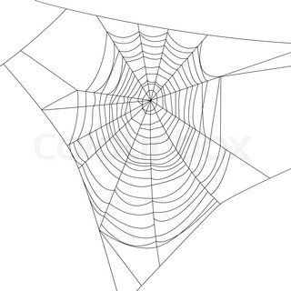 Spider web isolated on white for Halloween design | Vector ...