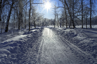 Snow path in a frozen park and Sun backlight. North of Russia