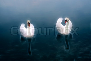 Two white swans at blue water rendered with fractal light rays