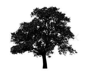 ensomme sort træ grafisk isoleret på hvid baggrund