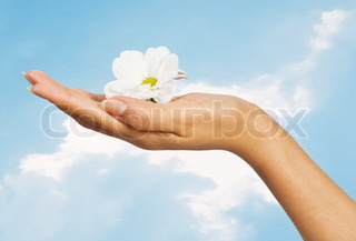 image of beautiful female hand with flower