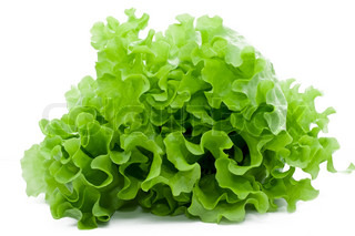 Frischer grüner Blattsalat isoliert auf weißem Hintergrund