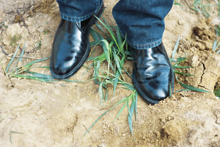 ©James Hardy/AltoPress/Maxppp ; Person wearing black dress shoes standing on top of grass, cropped view