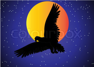 the illustration eagle in the sky on background of the moon and stars.
